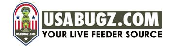 USA Bugz .com